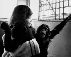 Vivian and a baby chimp from '2001: A Space Odyssey, 1967'